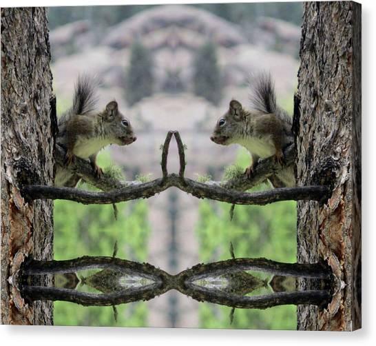 Gray Squirrel Soul Mates Canvas Print