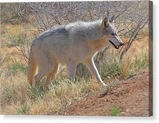 Bushy Tail Canvas Print - Gray Wolf by Donna Kennedy