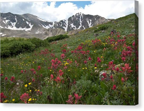 Gray's And Torreys Canvas Print