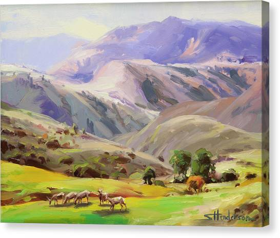 Salmon Canvas Print - Grazing In The Salmon River Mountains by Steve Henderson