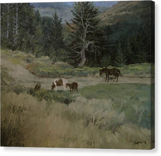 Grazing Canvas Print by Richard Ong