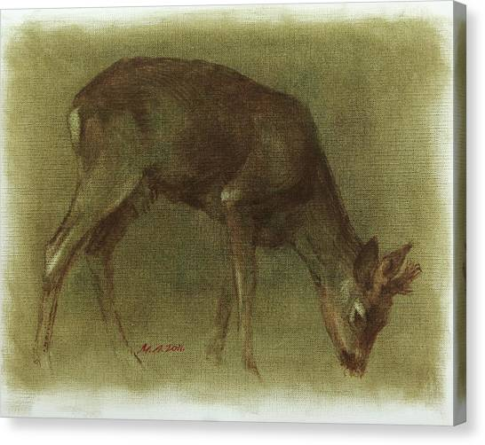 Grazing Roe Deer Oil Painting Canvas Print