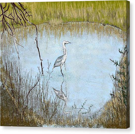 Great Blue Canvas Print by Carole Boyd