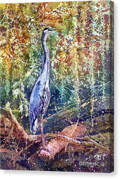 Large Birds Canvas Print - Great Blue Heron by Hailey E Herrera