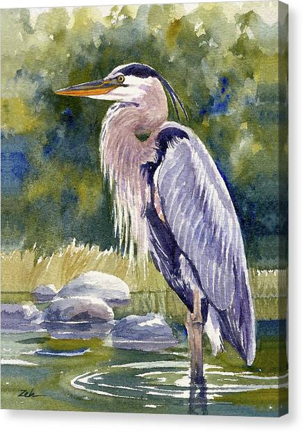 Great Blue Heron In A Stream Canvas Print