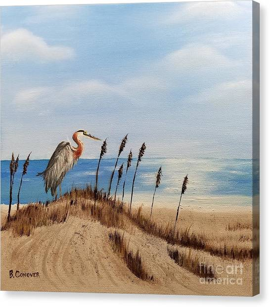 Great Blue Heron - Outer Banks Canvas Print