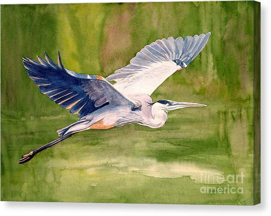 Large Birds Canvas Print - Great Blue Heron by Pauline Ross