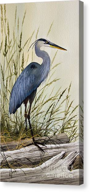 Heron Canvas Print - Great Blue Heron Splendor by James Williamson