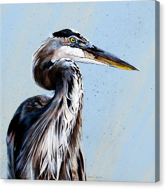 Great Blue Theodore Canvas Print