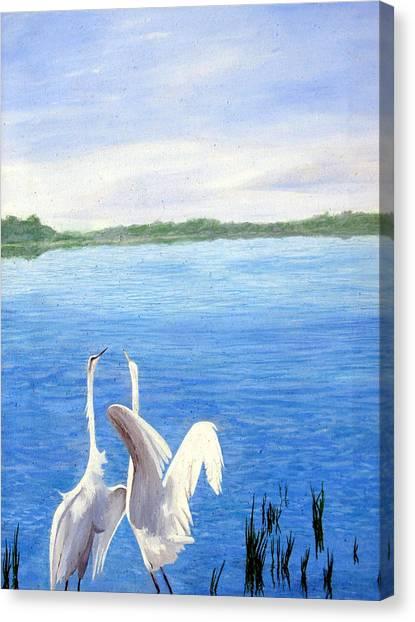 Great Egrets Canvas Print by Lauretta Cole Larsen