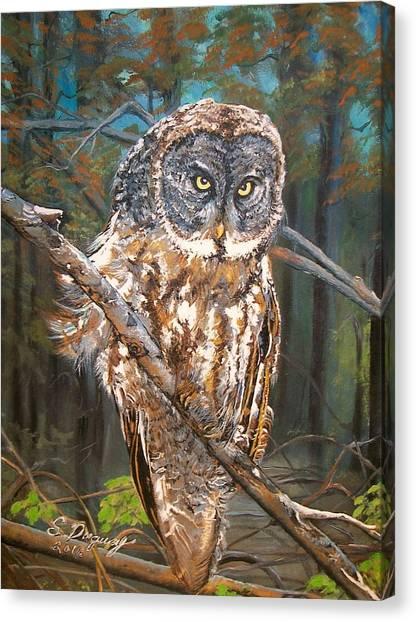 Great Grey Owl 2 Canvas Print