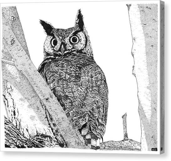 Great Horned Owl In A Tamarisk Canvas Print