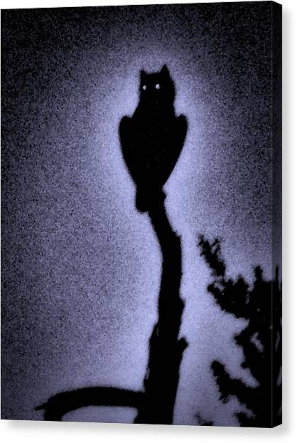 Great Horned Owl In The Desert 4 Canvas Print