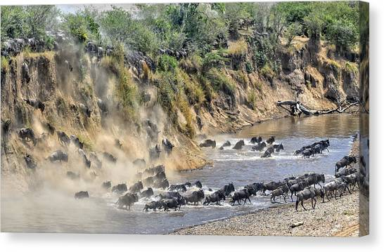Dust Canvas Print - Great Migration by Hua Zhu