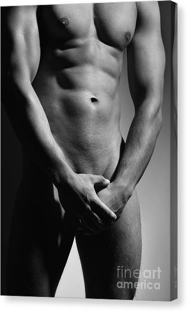 Great Nude Male Body Canvas Print