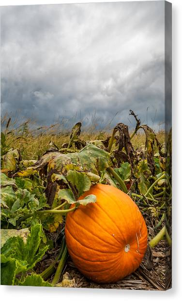 Great Pumpkin Off Center Canvas Print