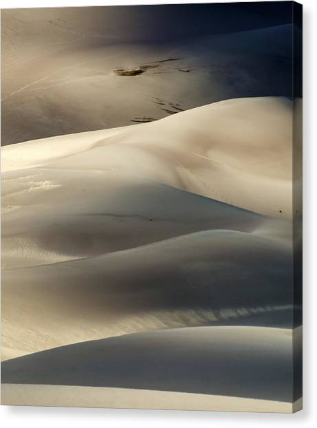 Great Sand Dunes National Park V Canvas Print