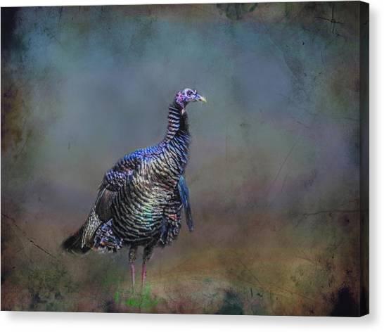 Great Smokey Turkey Canvas Print