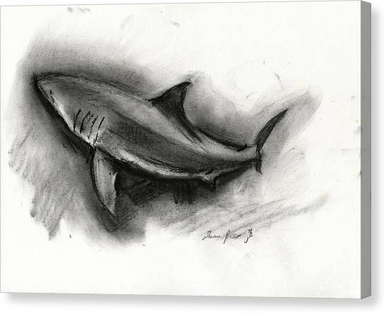 Jaws Canvas Print - Great White Shark Drawing by Juan Bosco
