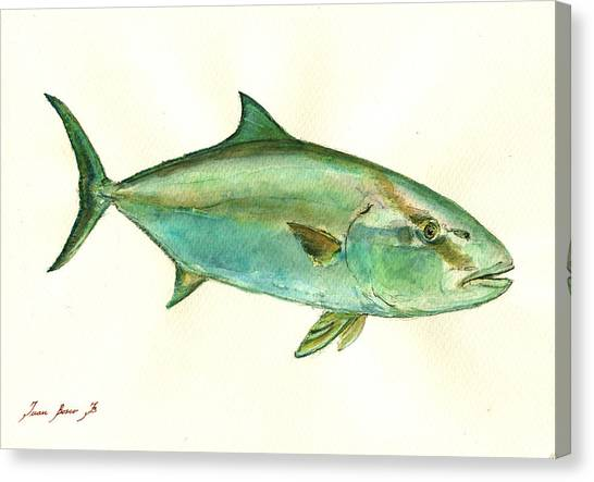 Nautical Decor Canvas Print - Greater Amberjack Fish by Juan  Bosco
