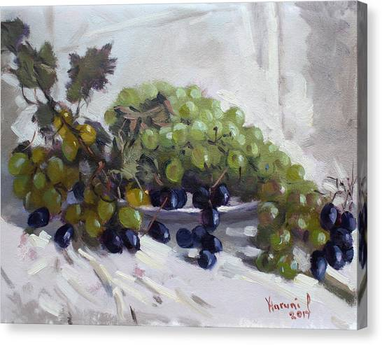 Ancient Art Canvas Print - Greek Grapes by Ylli Haruni