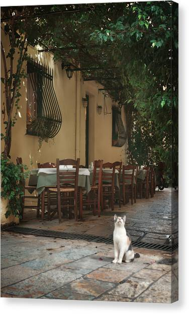 Pub Canvas Print - Greek Streets - Corfu by Cambion Art
