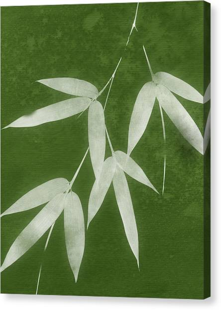 Bamboo Canvas Print - Green Bamboo 1-art By Linda Woods by Linda Woods