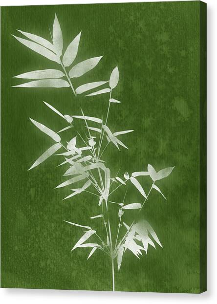 Bamboo Canvas Print - Green Bamboo 3- Art By Linda Woods by Linda Woods