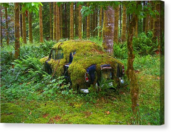 Green Car Canvas Print by Ulrich Burkhalter
