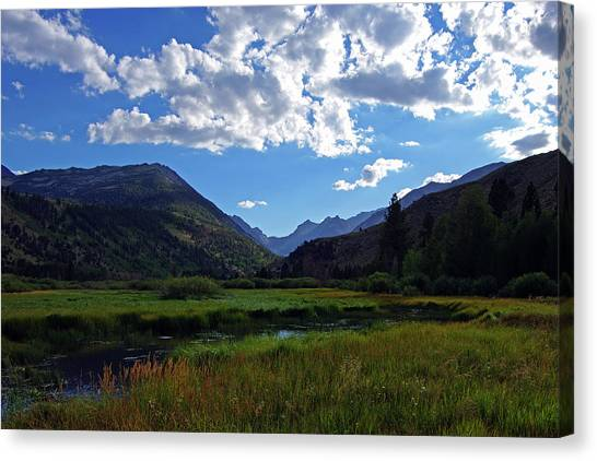 Green Creek Meadow 2 Canvas Print