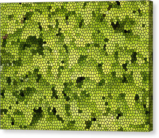 Green Curtain Canvas Print by James Granberry