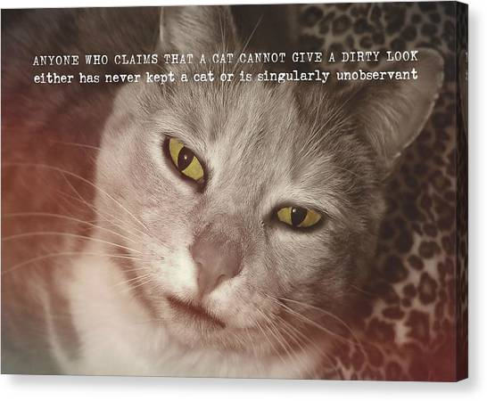 Green Eyed Glare Quote Canvas Print by JAMART Photography