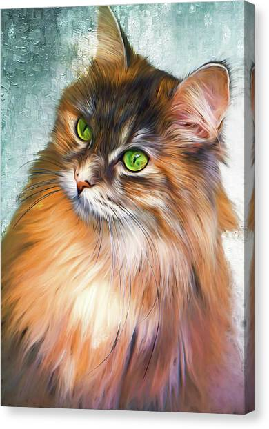 Green-eyed Maine Coon Cat - Remastered Canvas Print