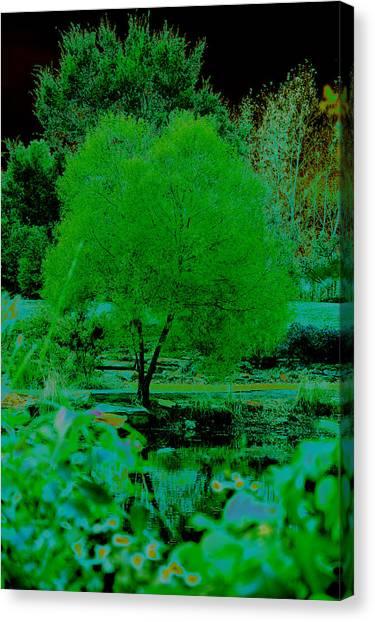 Green Fantasy Canvas Print by Etha  Walters