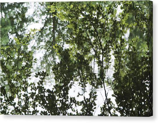 Green Fantasy Canvas Print by Wedigo Ferchland