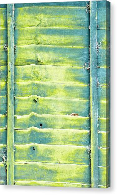 Border Wall Canvas Print - Green Fence by Tom Gowanlock