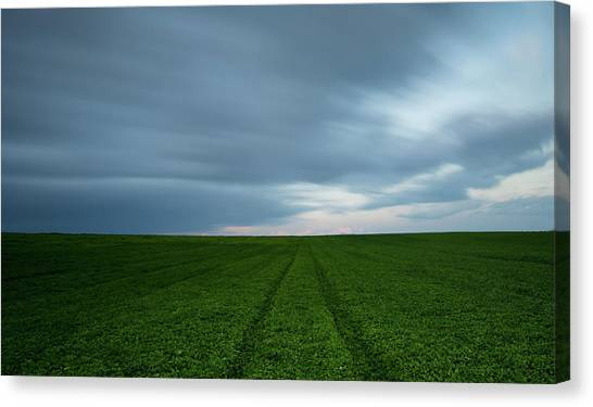 Green Field And Cloudy Sky Canvas Print