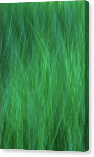 Green Fire 2 Canvas Print