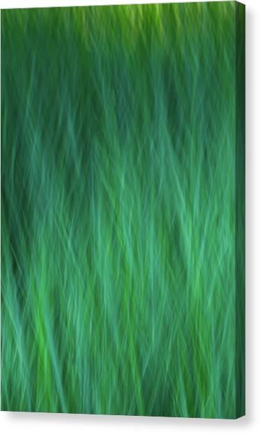 Green Fire 3 Canvas Print