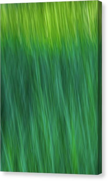 Green Fire 4 Canvas Print
