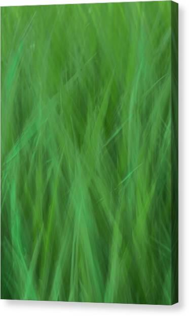 Green Fire 8 Canvas Print