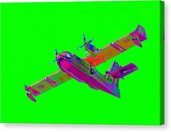 Green Fire Flight  Canvas Print
