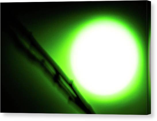 Green Goblin Canvas Print