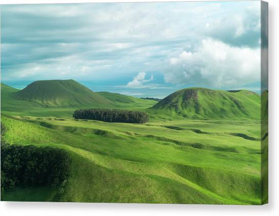 Helicopter Canvas Print - Green Hills On The Big Island Of Hawaii by Larry Marshall