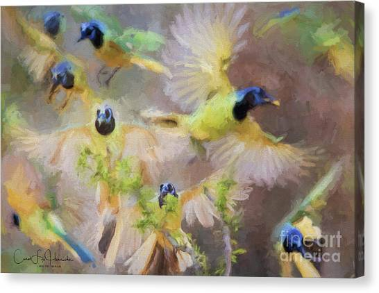 Green Jay Collage Canvas Print