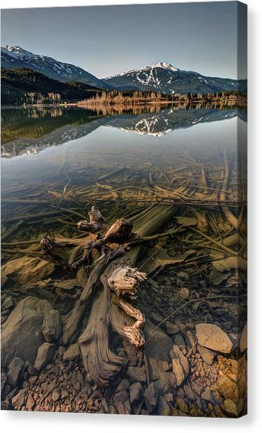Canvas Print featuring the photograph Green Lake Ironwood by Pierre Leclerc Photography