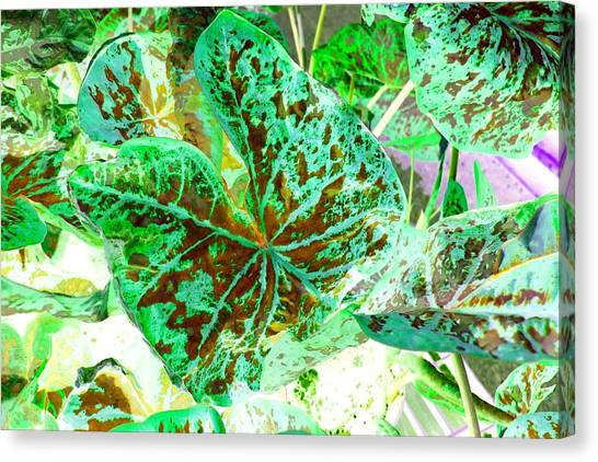 Canvas Print featuring the photograph Green Leafmania 1 by Marianne Dow