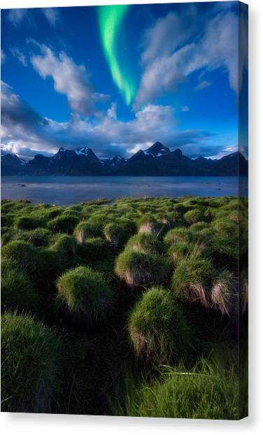 Aurora Borealis Canvas Print - Green Night by Tor-Ivar Naess