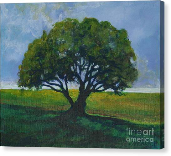 Green Oak Canvas Print by Michele Hollister - for Nancy Asbell