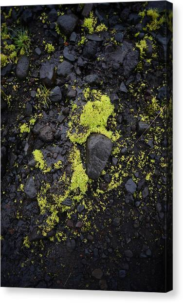 Green On Black On Iceland's Fimmvorduhals Trail Canvas Print